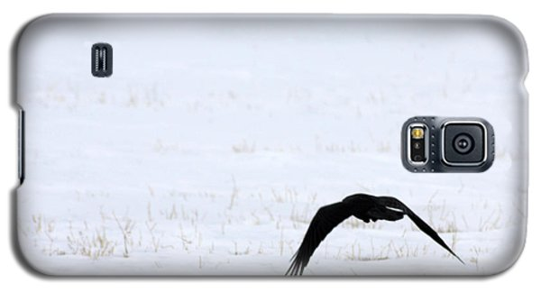 Raven In The Snow Galaxy S5 Case