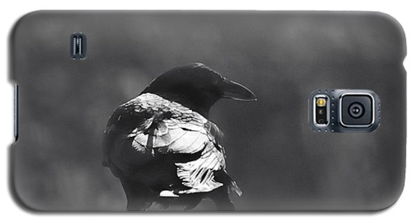 Galaxy S5 Case featuring the photograph Raven In The Sun by Susan Capuano