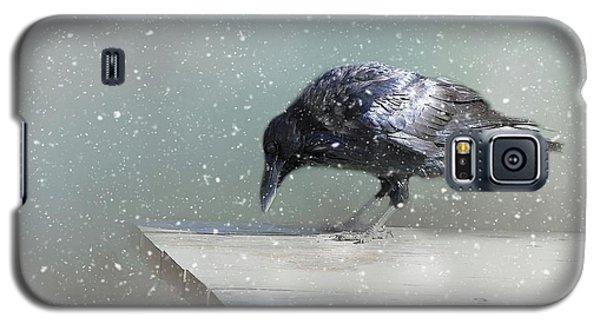 Raven In Winter Galaxy S5 Case