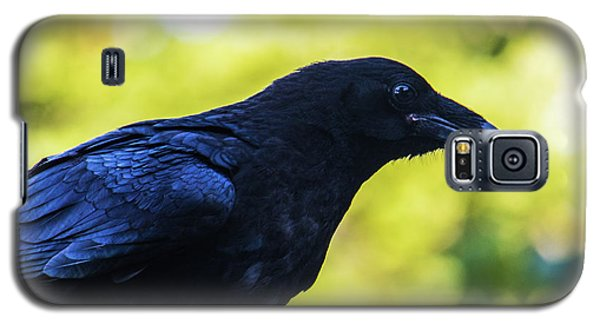 Galaxy S5 Case featuring the photograph Raven by Jonny D