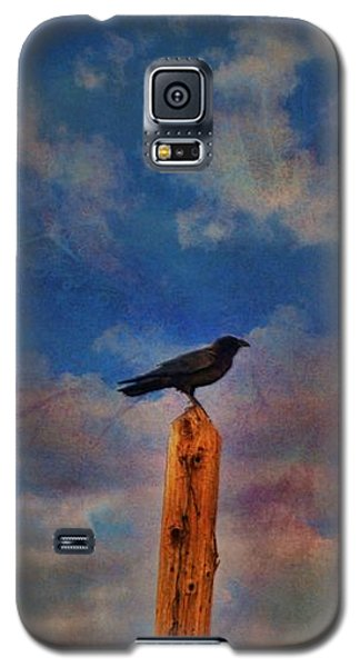 Galaxy S5 Case featuring the photograph Raven Pole by Jan Amiss Photography
