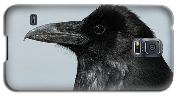 Raven Profile Galaxy S5 Case