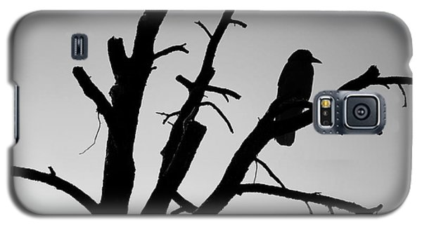 Raven Tree II Bw Galaxy S5 Case
