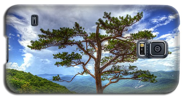 Ravens Roost Tree Galaxy S5 Case by Greg Reed