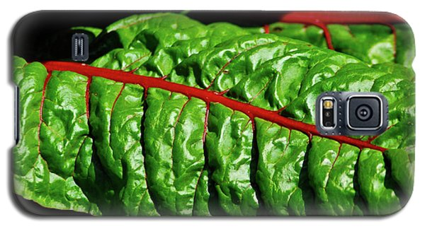 Galaxy S5 Case featuring the photograph Raw Food by Harry Spitz