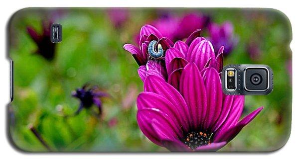 Raw Silk Galaxy S5 Case