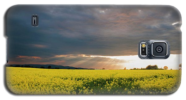 Rays At Sunset Galaxy S5 Case