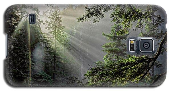 Rays Through An Oregon Rain Forest Galaxy S5 Case