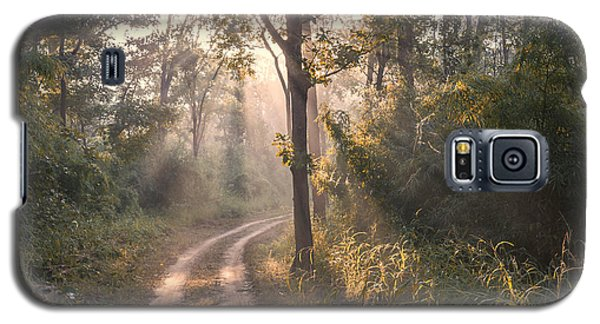 Rays Through Jungle Galaxy S5 Case