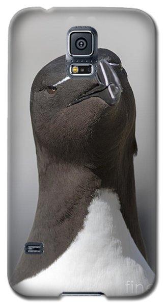 Razorbill Galaxy S5 Case by Karen Van Der Zijden