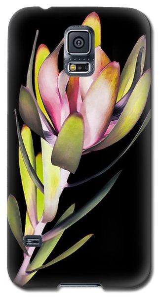Galaxy S5 Case featuring the photograph Reach by John Hansen