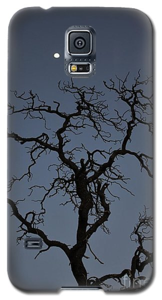 Galaxy S5 Case featuring the photograph Reaching For The Moon by Craig Wood