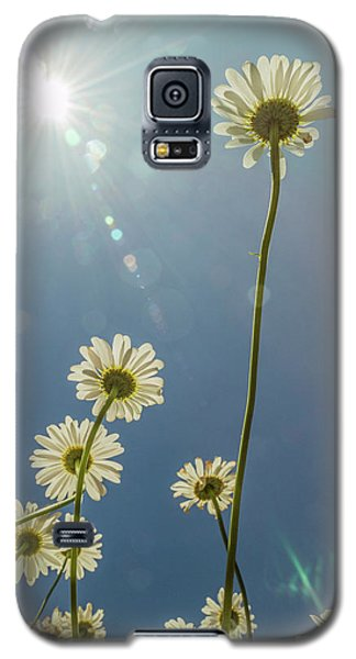 Reaching For The Sun Galaxy S5 Case by Garry McMichael