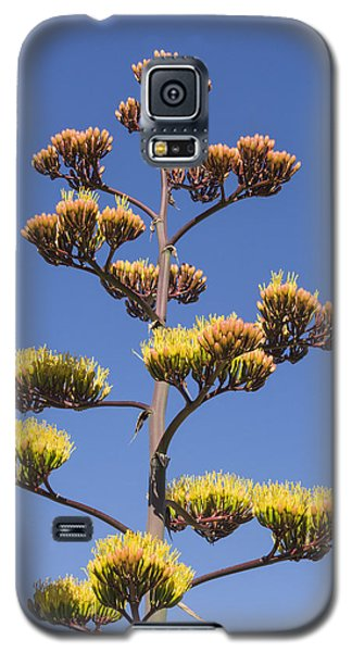 Galaxy S5 Case featuring the photograph Reaching To The Sky by Laura Pratt
