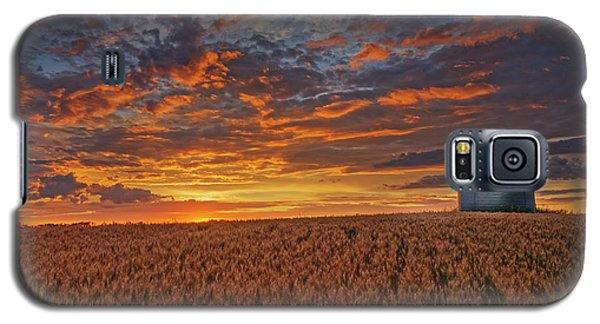 Galaxy S5 Case featuring the photograph Ready For Harvest by Dan Jurak