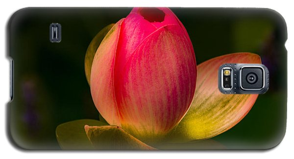 Ready To Bloom Galaxy S5 Case