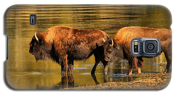 Galaxy S5 Case featuring the photograph Ready To Cross The Yellowstone by Adam Jewell