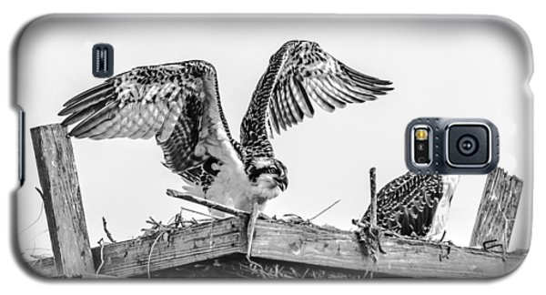 Ready To Fly Bw Galaxy S5 Case