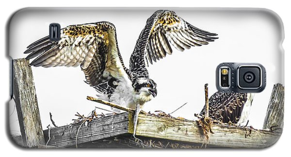 Ready To Fly Galaxy S5 Case