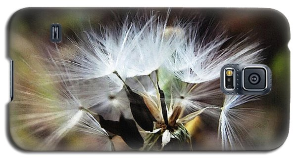 Ready To Fly... Salsify Seeds Galaxy S5 Case