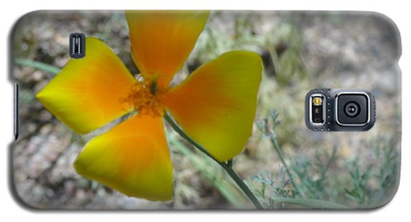 One Gold Flower Living Life In The Desert Galaxy S5 Case