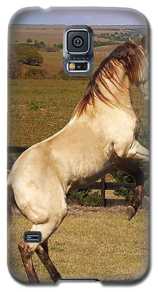 Wild At Heart Galaxy S5 Case by Barbie Batson