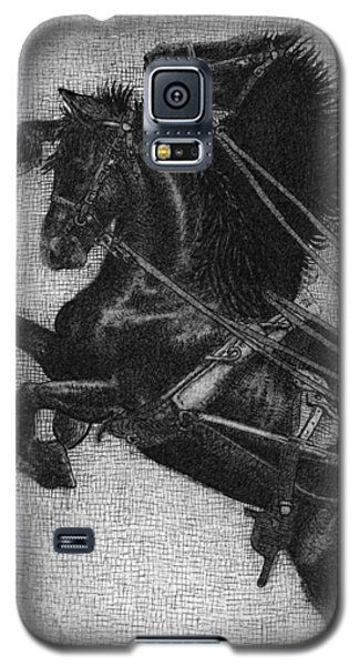 White Horse Galaxy S5 Case - Rearing Horses by Eric Fan