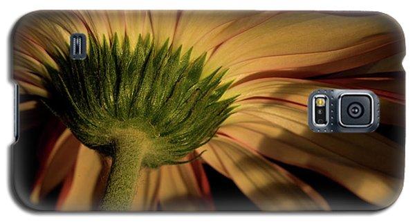 Rebel Galaxy S5 Case