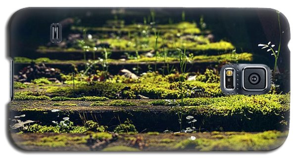 Galaxy S5 Case featuring the photograph Reclaimed By Nature by Peter Thoeny