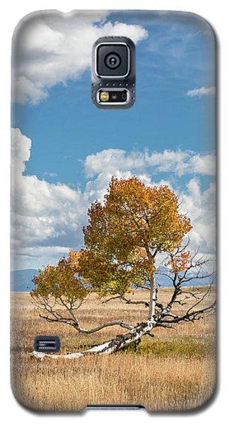 Reclining In The Sun Galaxy S5 Case