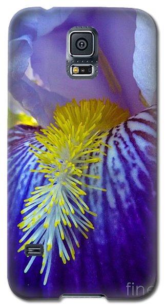 Recollection Spring 1 Galaxy S5 Case
