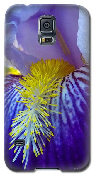 Recollection Spring 1 Galaxy S5 Case