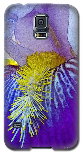 Recollection Spring 3 Galaxy S5 Case