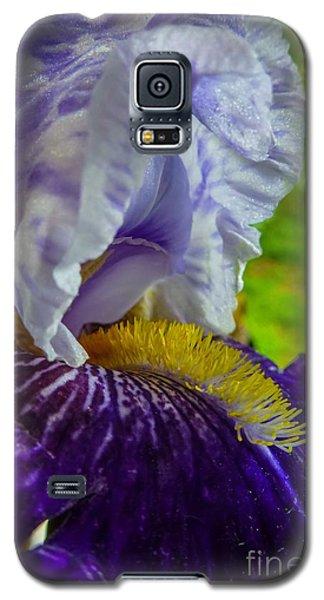 Recollection Spring 4 Galaxy S5 Case