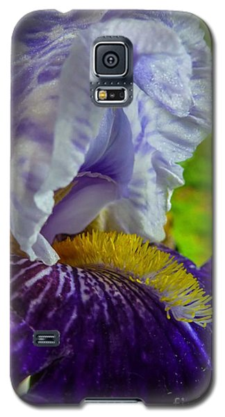 Recollection Spring 4 Galaxy S5 Case