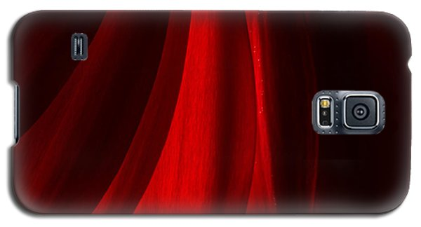 Red Abstract Of Chrysanthemum Wildflower Galaxy S5 Case by John Williams