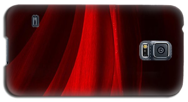 Red Abstract Of Chrysanthemum Wildflower Galaxy S5 Case