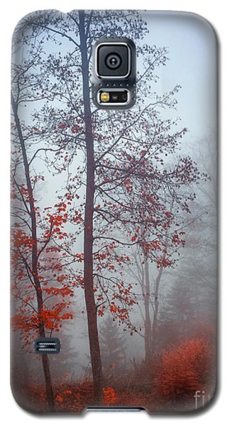 Galaxy S5 Case featuring the photograph Red And Blue by Elena Elisseeva