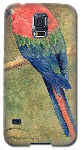 Red And Blue Macaw Galaxy S5 Case