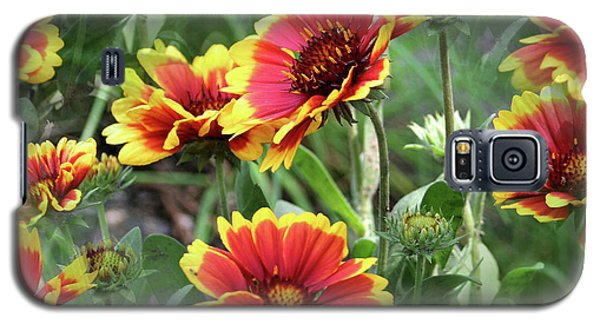 Red And Yellow Daisy Dreams Galaxy S5 Case