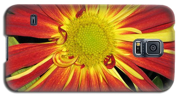 Galaxy S5 Case featuring the photograph Red And Yellow Flower by Barbara Yearty