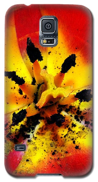 Red And Yellow Flower Galaxy S5 Case