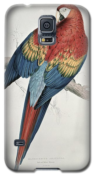 Macaw Galaxy S5 Case - Red And Yellow Macaw  by Edward Lear