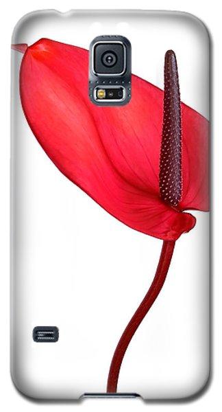 Red Anthrium Galaxy S5 Case
