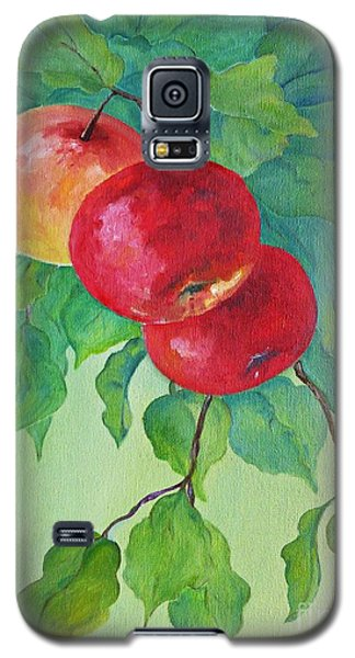 Galaxy S5 Case featuring the painting Red Apples by AmaS Art