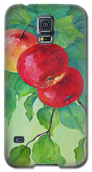 Red Apples Galaxy S5 Case by AmaS Art