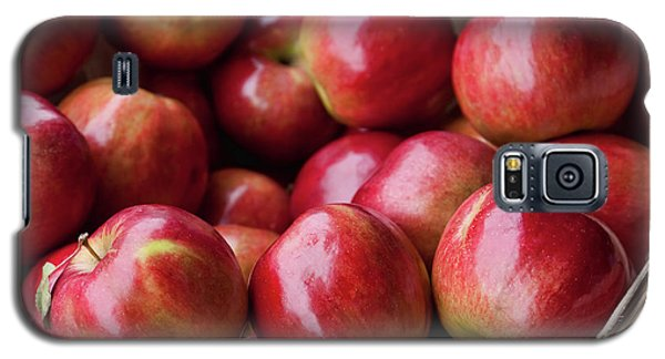 Red Apples Galaxy S5 Case