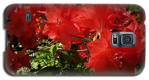 Red Azalea Galaxy S5 Case