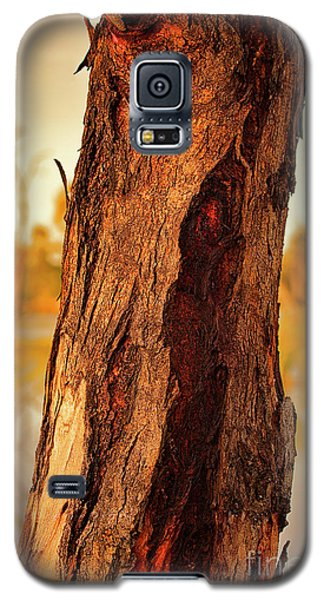 Galaxy S5 Case featuring the photograph Red Bark by Douglas Barnard