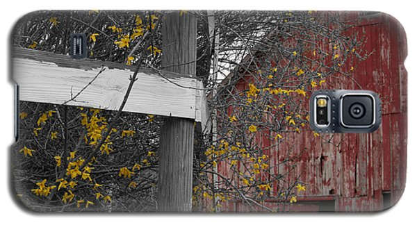 Red Barn And Forsythia Galaxy S5 Case